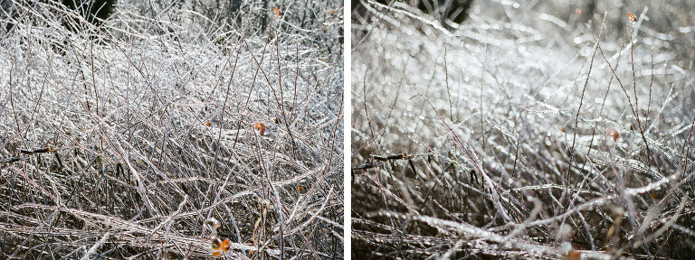 002_icy_diptych_